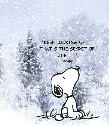 The Wisdom of Snoop Dog